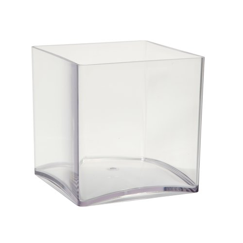 OASISÂ clear acrylic cube vase (15cm) by Smithers Oasis