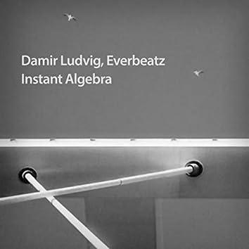 Instant Algebra