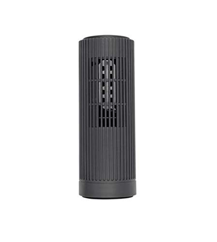 Best Review Of Leechenxi Anion Air Purifier for Home,for Allergy, Pet Dander, Odor, Cigarette Smoke, Mold, Dust, Pollen, Germs, True HEPA Filter for Home and Office