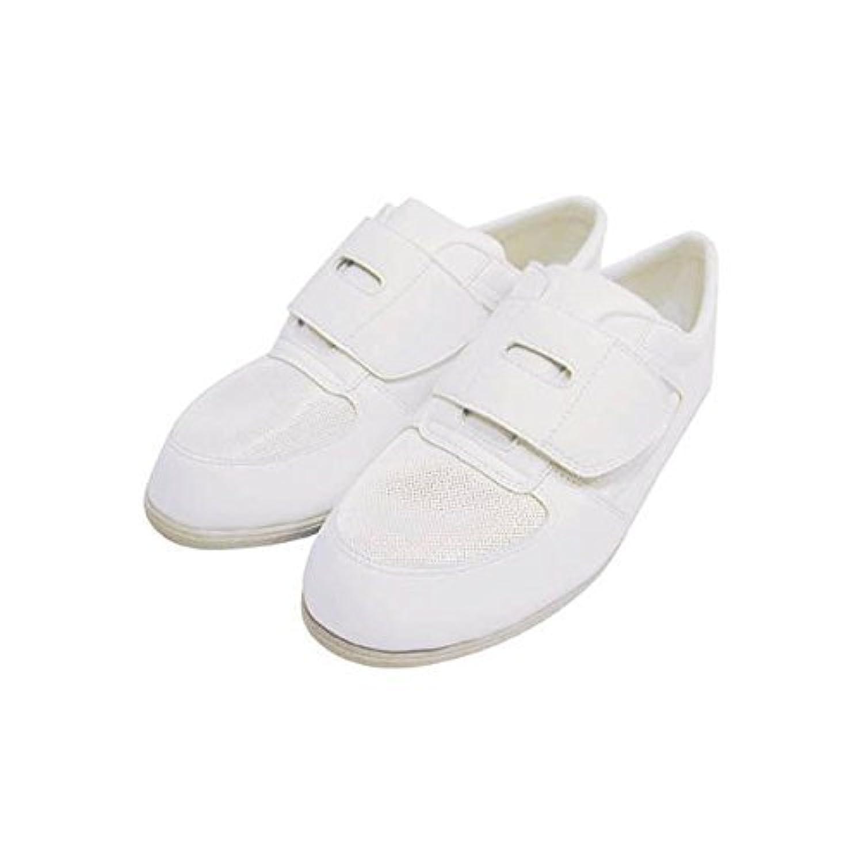 シモン 静電作業靴 メッシュ靴 CA-61 23.0cm CA61-23.0