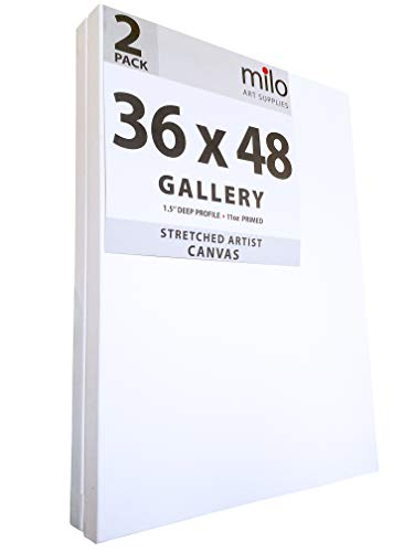 Milo Gallery Profile Stretched Canvas 36x48