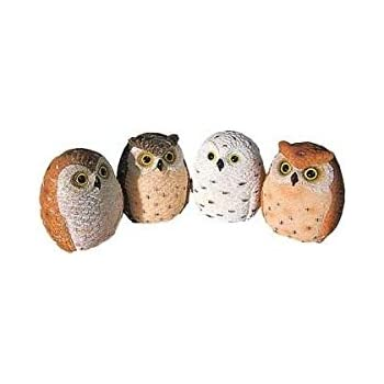Miniature Owl Figurines Collection 2.25-inch 4-pc Set
