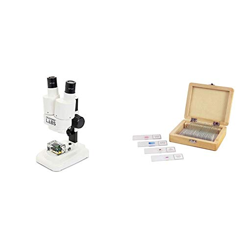 Celestron 44207 Labs CL-S20 Stereo Microscope with Prepared Slides 25 piece...
