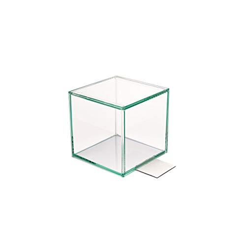 Design Ideas Harlow Buchstütze, dekoratives Klarglas, Würfel und Terrarium, 11,4 cm Würfel mit Metallsockel