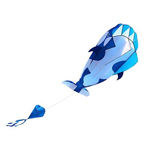 huichang 3D Drachen, Delphin Einleiner Drachen Rahmenlos Parafoil Drachen Kite - mit 30 Meter Drachenschnur mit 1 Stoffbeutel - Kinderdrachen Geschenkidee Spielzeug (Himmelblau)