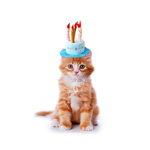 Bello Luna Pet Birthday Hat Verstellbarer kurzer Plüsch-Hundehut wie eine Geburtstagstorte Geeignet für die meisten Hunde und Katzen - Blau