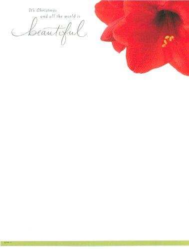 Hallmark DESIGNED Printer/Copier PAPER - Christmas Amaryllis - 25 Sheets