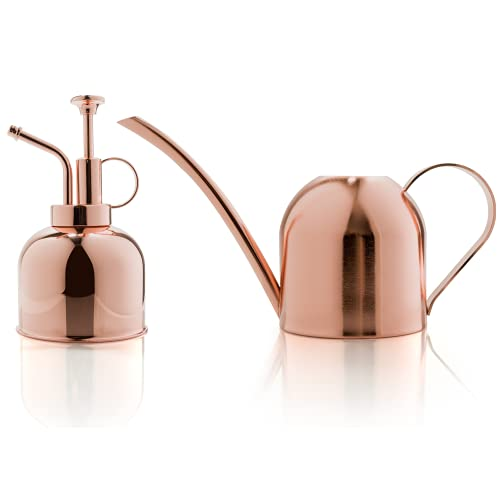 Indoor Small Copper Watering Can Set for Houseplant   Bonus Book for plants  ...