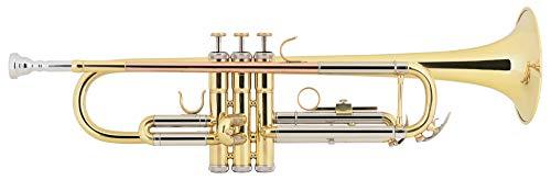 Sheffield 40L Bb-trompet - voor beginners - messing mok & gouden messing mondbuis - boring: 11,65 mm - helder gelakt - inclusief koffer, mondstuk en school met CD