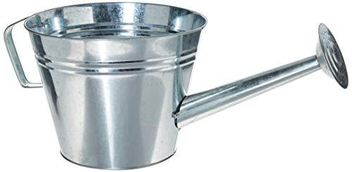 Gardman 8349 Galvanized Steel Watering Can Planter