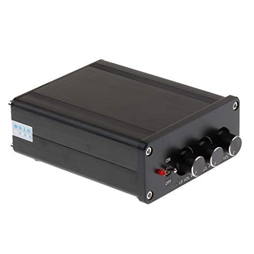 D DOLITY Amplificateur Audio 2 Canaux de Classe D Tension De DC18V à DC24V