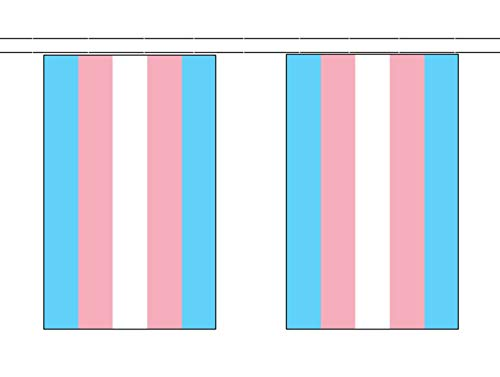 Wereld Vlag Winkel Transgender Monica Helms 6 Meter Bunting 20 Vlaggen LGBT+ Banner