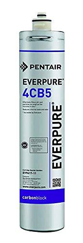 Everpure 4CB5 22.680 Liter 5 micron
