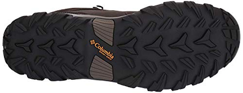 Columbia mens Newton Ridge Plus Ii Waterproof Hiking Boot, Cordovan/Squash, 10 US