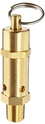 """Kingston 112CSS Series Brass ASME-Code Safety Valve, 165 psi Set Pressure, 1/4"""" NPT Male from Kingston Valves"""
