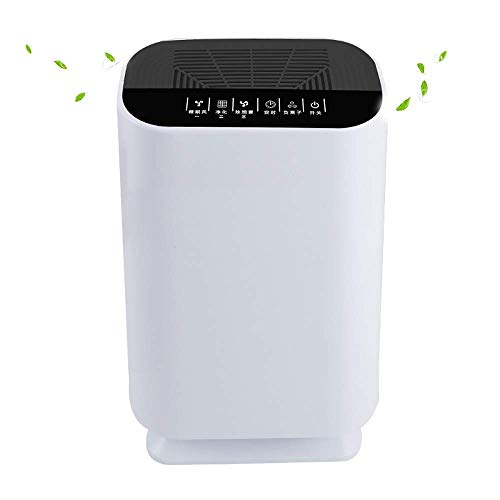 Amazing Deal KLSJJ Air Purifier with HEPA Filter, Allergies Eliminator for Pets Dander, Smokers, Com...