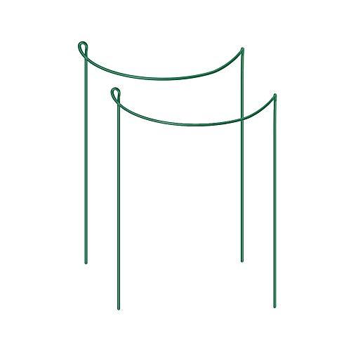 Wankd 2x Strauchstütze | halbrund grün 25x40 cm | Staudenhalter Blumenhalter Rankengewächs Buschstütze Pflanzenstütze Blumenstütze Staudenstütze Rankhilfe Strauchhalter Rosenstütze (25 * 40CM)