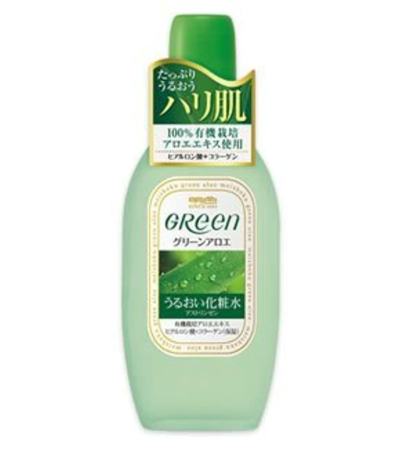 憂鬱なガス取るに足らない(明色)グリーン アストリンゼン 170ml