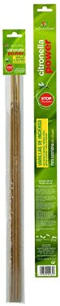 Roura 月香香茅蜡烛粗 260 毫米蜡绿色均码