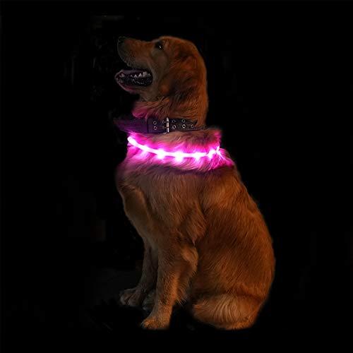 luz collar perro de la marca SUNET