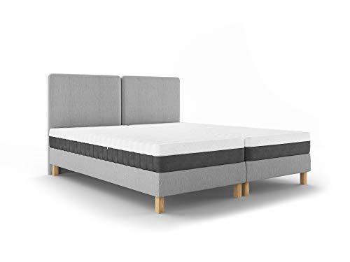 Mazzini Sofas Bett mit Matratze mit Federkernmatratze, Lotus, 2-Sitzer, Hellgrau, 205 x 140 x 96 cm