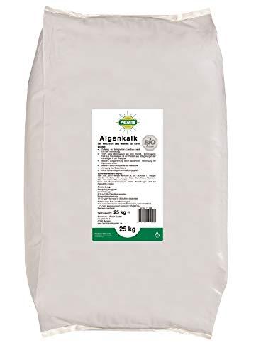 Algenkalk Beckmann 25 kg Buchsbaumretter - Zulässig für den Bio-Anbau - Buchsbaum Kur - Feines Pulver - - Buxus