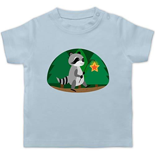 Tiermotive Baby - Waschbär Laterne - 1/3 Monate - Babyblau - Baby t-Shirt waschbär - BZ02 - Baby T-Shirt Kurzarm
