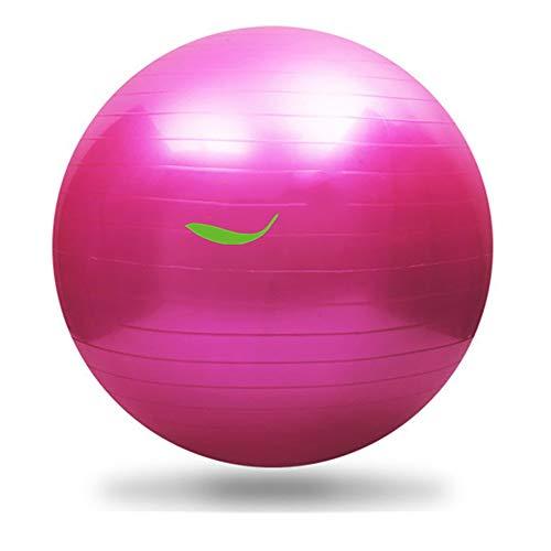 ERWEF 65mm Yoga Ball, Übung Fitness Ball, Abnehmen und Eindickung Yoga Ball, kann auch als Spaß-Spielzeug verwendet Werden (Color : Pink)