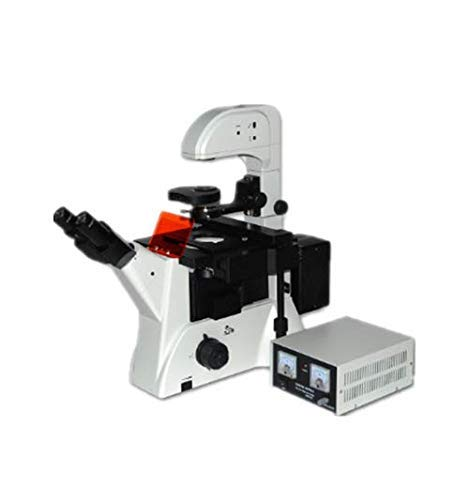 CTO High Power Microscope for Microbiological Observation and Research Inverted Fluorescence Microscope Dedicated to Cell Tissue Biopharmaceutical Medical Testing
