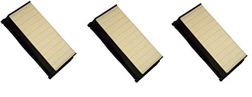 Affordable LifeSupplyUSA 3 Pack Replacement HEPA Filter Compatible with Electrolux Brisa EF100 Repla...