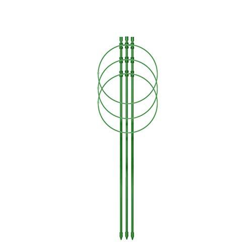 Pflanzen Klettergerüst, Gartenpflanzen Stützrahmen mit 3 Verstellbaren Ringen, Blumenrahmen Stehen Gartenbedarf, für kleine Kletterpflanzen Blumen Obstpflanzen