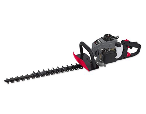 POWERPLUS POWEG3010 - Cortasetos 22,5cc 600mm