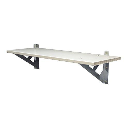 Palram SkyLight Shelf Gerätehäuser Zubehör, weiß, 30.5 x 84.7 x 22 cm