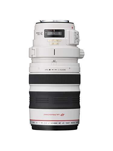 Canon Zoomobjektiv EF 28-300mm F3.5-5.6L IS USM für EOS (77 mm Filtergewinde, Bildstabilisator, Autofokus), hellgrau/schwarz