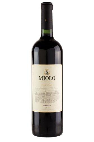 Miolo Family Vineyards Merlot Brasilien Wein, 1er Pack (1 x 750 ml)