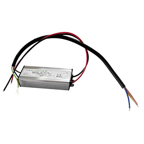 Brightz 1W 300mA Constant Power Supply LED Transformer Controller AC85-265V (EN) IP65