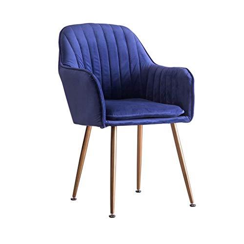 JIEER-C Ergonomische stoel, eetkamerstoel, comfortabel, kussen van velours, poten van metaal, afneembaar en wasbaar overtrek, stoelen, vrijetijdsstoelen, kamer 4