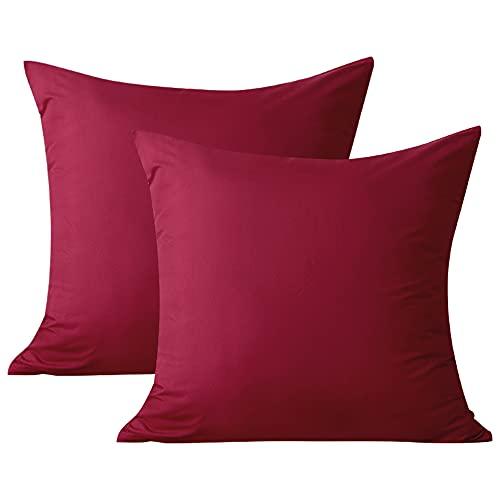 Aisbo Juego de 2 fundas de almohada (40 x 40 cm, microfibra, con cremallera), color rojo