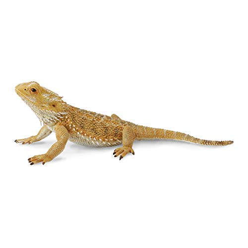 CollectA Bearded Dragon Lizard Toy Figure - Authentic Hand Painted Model