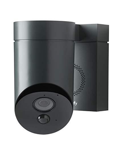 Somfy 2401563 - Überwachungskamera, Full HD-Kamera mit Nachsicht, Integriete Sirene mit 110 dB, Bewegungserkennung, grau