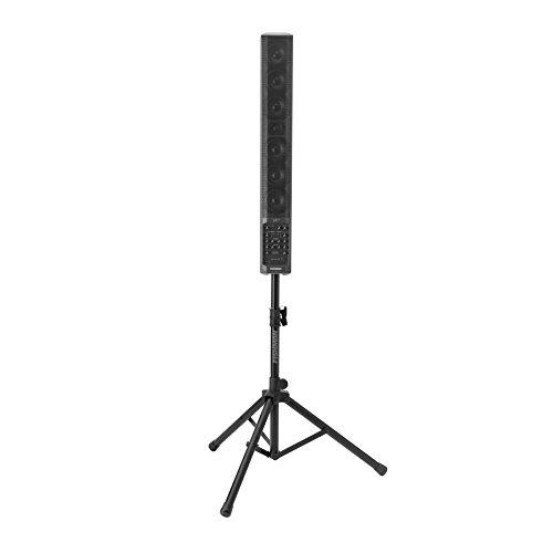 Fishman SA330X Performance Audio Speaker System