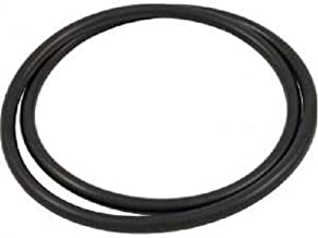 RO6G 39010200 Tank Clamp O-Ring Replacement Pool and Spa Filter for Pentair