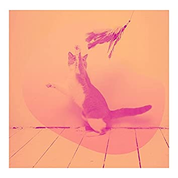 ピンク(孤独な猫)