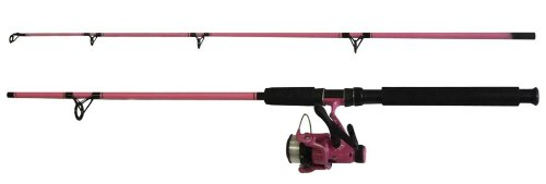 Fladen Angeln Power 30 Festival Combo 2,1m, Farbe: Pink