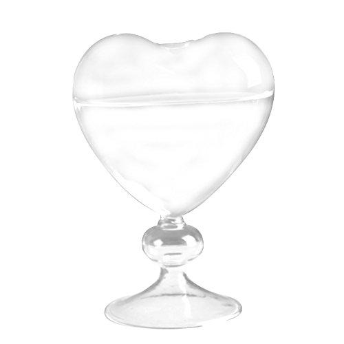 TOOGOO Blumentoepfe Pflanzgefaesse Herz Glasvase Dekoration Blumenvase Desktop Vase dekorative Vase Glas Pflanzer Hochzeit Dekoration