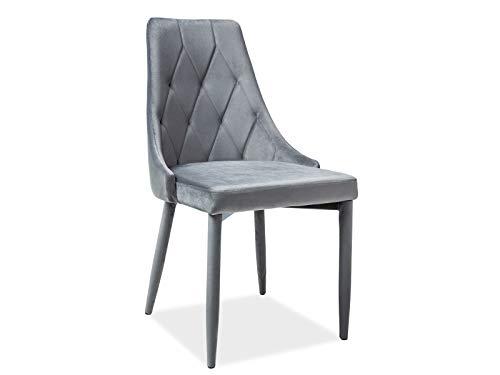 LUENRA - Juego de 2 sillas de comedor, 88 × 46 × 46 cm, traje de bandeja acolchada de tela de terciopelo y patas de metal, color gris