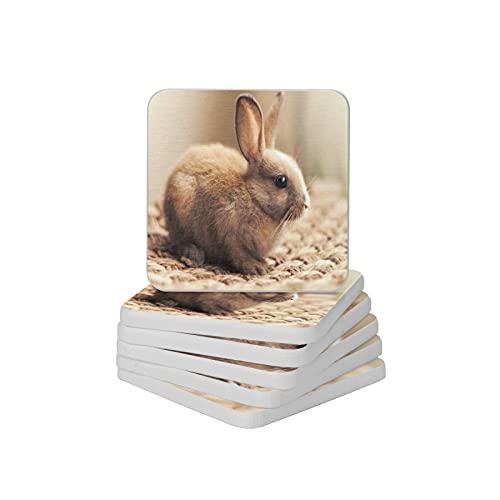Juego de 6 posavasos absorbentes para bebidas con diseño de conejos para tipos de tazas y tazas