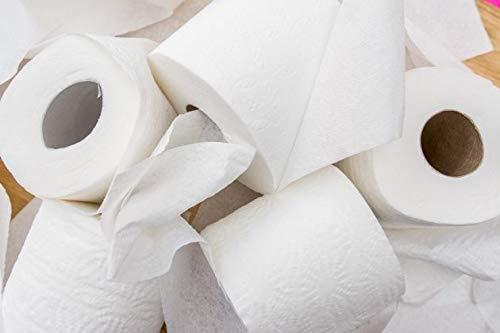 100 rollos de papel higiénico Jumbo de 2 capas, perfecto para hogares, bares, escuelas, hoteles