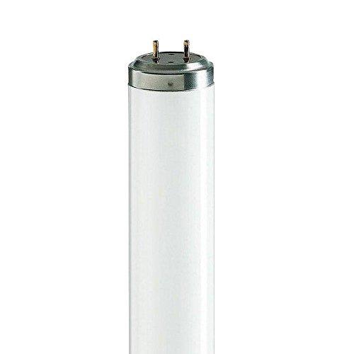 Brite source,2 x F65w 5Ft - 65w (1500mm) T12-Leuchtstoffröhre - Standard White [3500K] - 2-PIN [820044]
