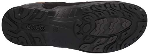 ECCO Biom Terrain, High Rise Hiking Shoes Men's